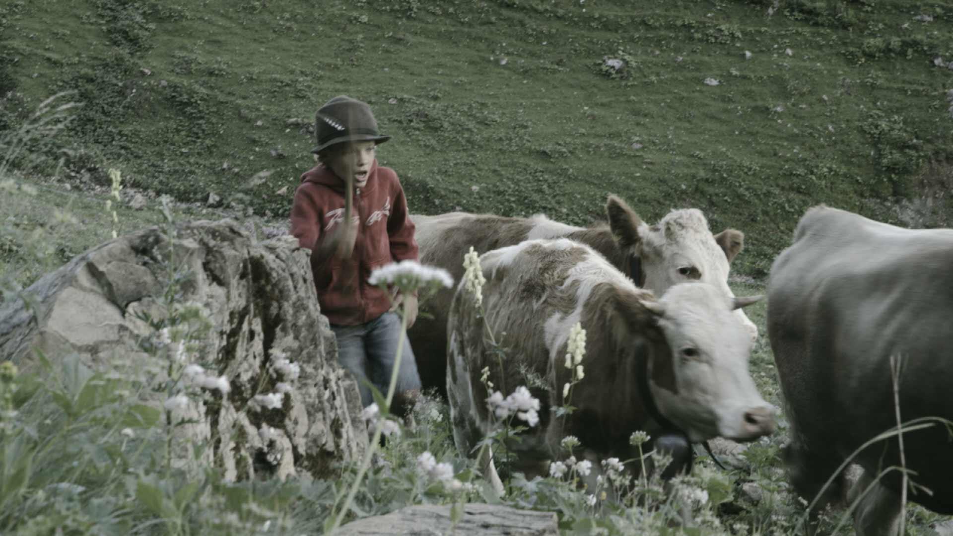 Junger Hirte treibt das Vieh