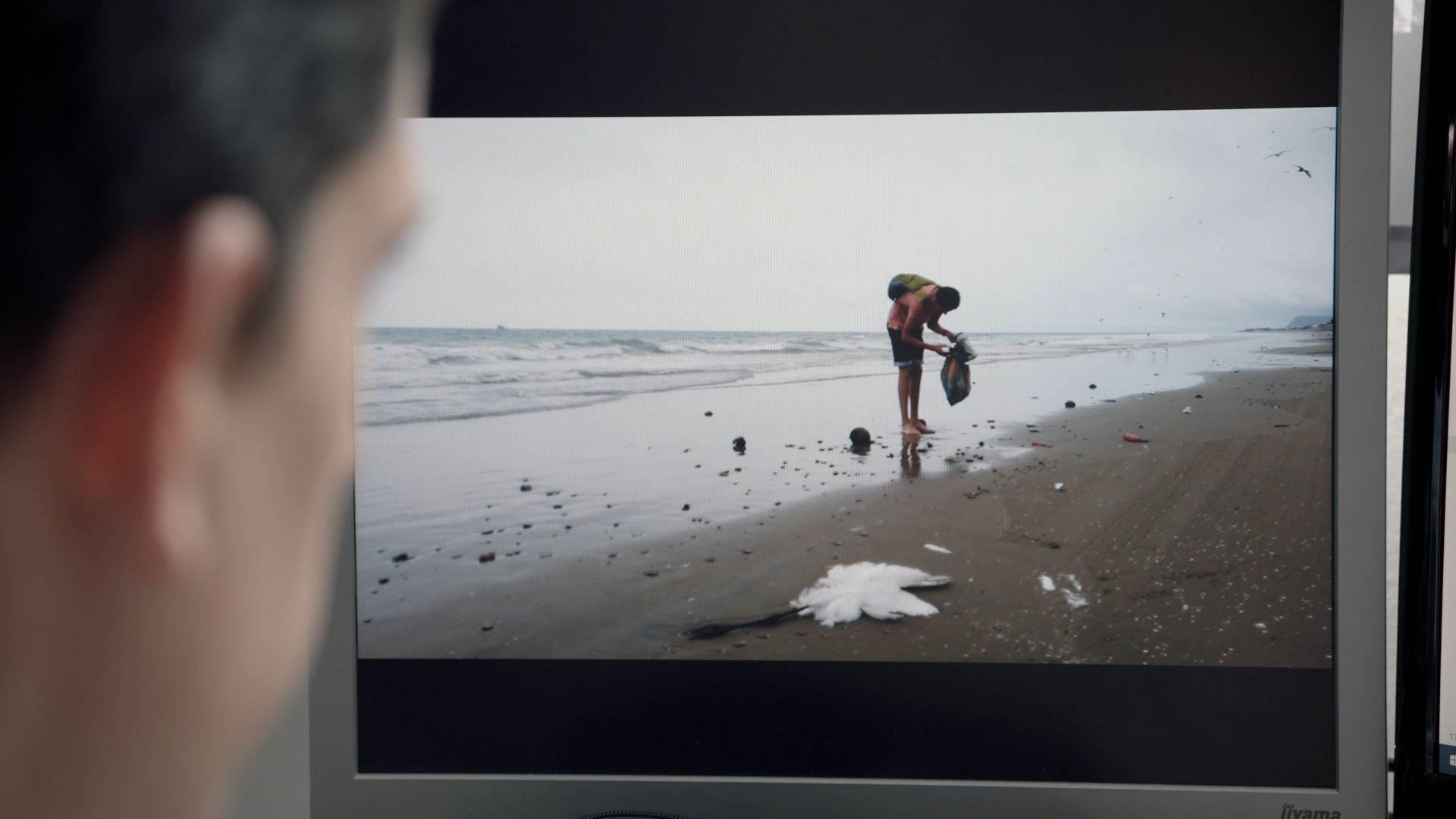 junger Mann findet am Strand einen toten Seevogel